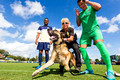 10/28/15 JSO K9 Demonstration at the Soccer Match